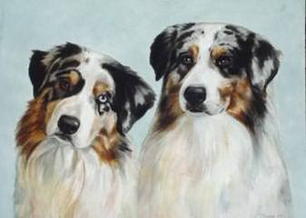 Dreammaker Farm's Aussies - Dog Breeders