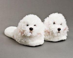 BRASABULL' S PRIDE - Dog Breeders