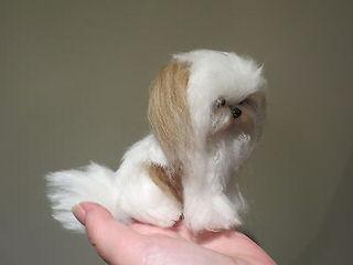 Got Mi-Kis? - Dog Breeders