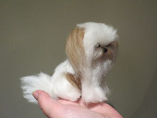 Elegant Tiny Paws - Dog Breeders