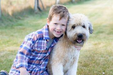 Liberty Farm Wheatens - Dog and Puppy Pictures