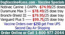 Dog Vaccine 4 Less